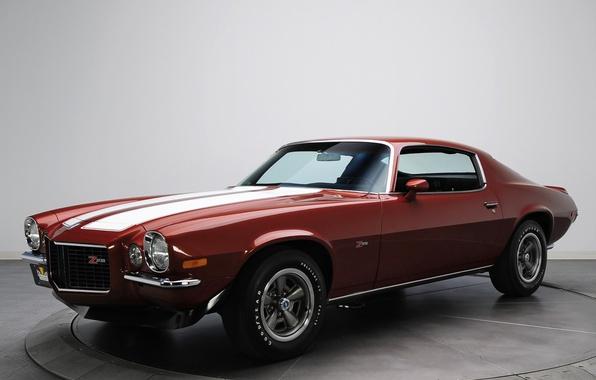 Picture retro, Chevrolet, muscle car, camaro, chevrolet, muscle car, 1970, Camaro, z28