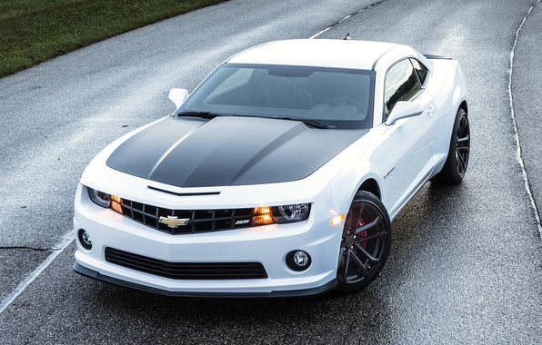 Picture road, white, Chevrolet, Camaro, Chevrolet, Camaro, the front, Muscle car, Muscle car, 1LE