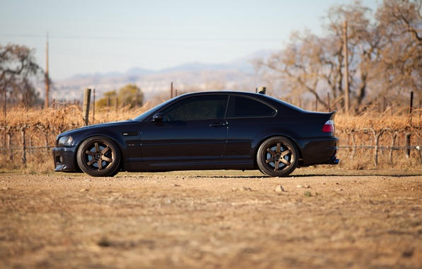 Picture black, black, bmw, BMW, profile, wheels, drives, black, e46