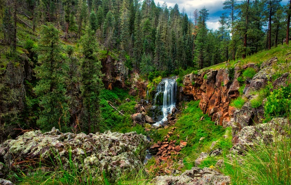 Picture forest, the sky, trees, mountains, nature, waterfall