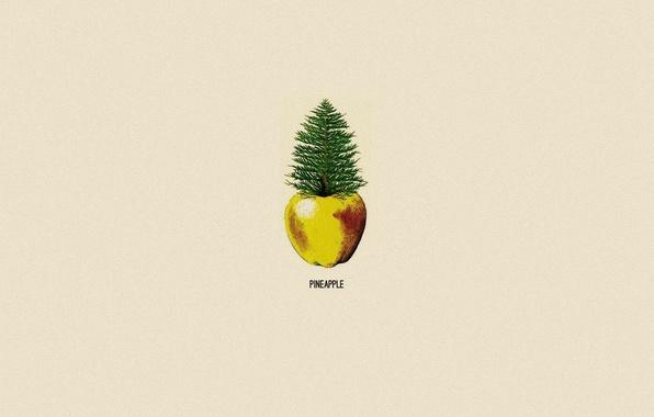 Picture Apple, minimalism, pineapple, pine