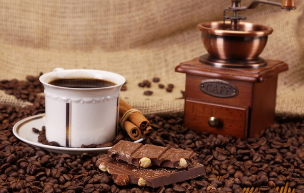 Picture coffee, chocolate, grain, Cup, nuts, cinnamon, sweet, coffee grinder