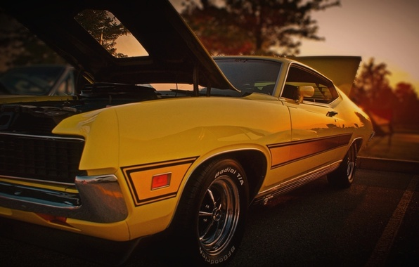 Picture Ford, Machine, Ford, Muscle, 1971, SAG, Kar, Torino, Oil, Torino, Sportsroof, 63F