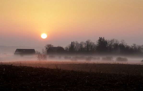 Picture field, landscape, sunset, fog, home