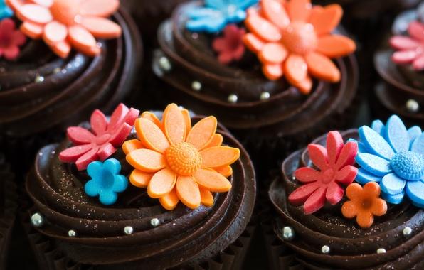 Picture flowers, chocolate, sweets, decoration, cake, cream, dessert, cupcake