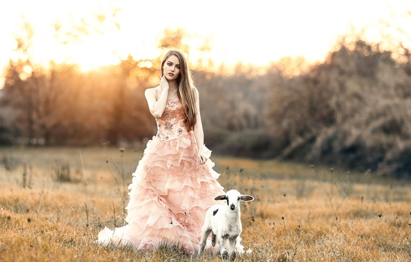 Picture girl, lamb, Alessandro Di Cicco, Sweet girl with a sweet lamb