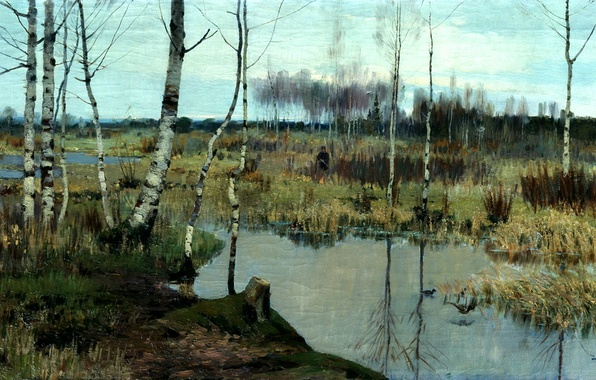 Picture the sky, water, trees, birds, people, swamp, duck, picture, painting, birch, hunter, Bergholz, spring landscape