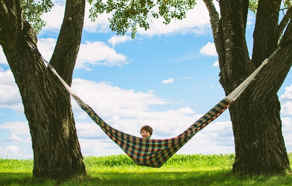 Picture summer, trees, stay, child, laughter, boy, hammock