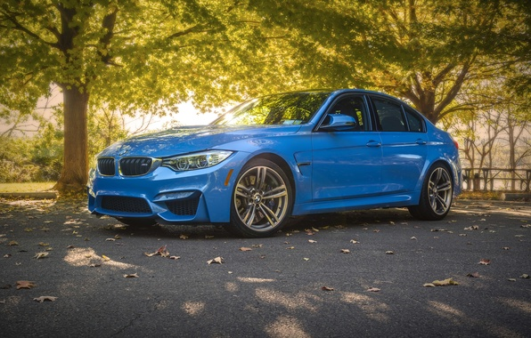 Picture the sun, trees, bench, blue, lake, Park, table, street, F80, BMW М3