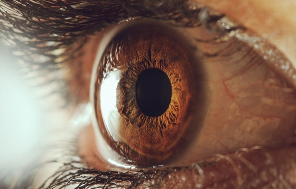 Picture macro, eyelashes, the pupil, the human eye, touch on