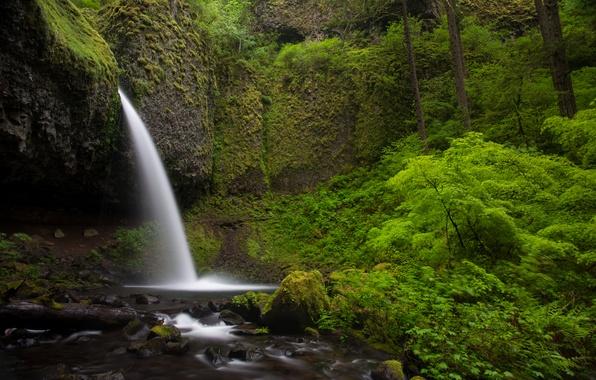 Picture nature, stones, rocks, green, waterfall, plants, nature, Waterfalls