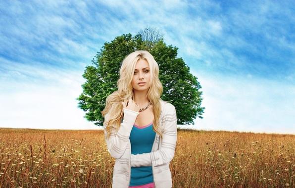 Picture field, the sky, girl, tree, meadow, blonde, beautiful