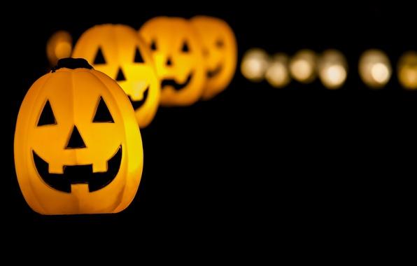Picture holiday, pumpkin, Halloween