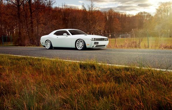 Picture Dodge, Challenger, white, Vossen Wheels