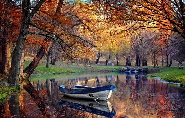 Picture trees, pond, Park, boat