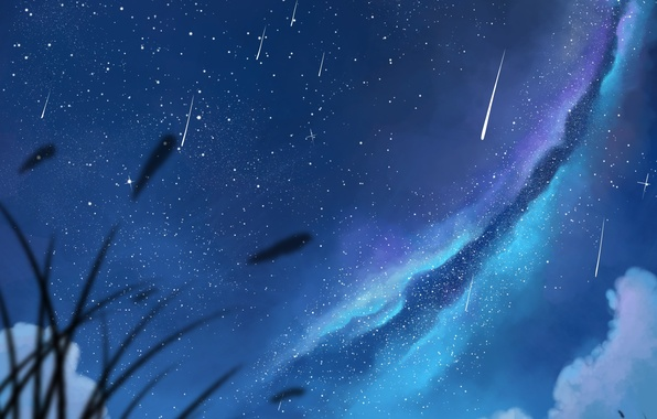 Picture the sky, girl, stars, clouds, night, anime, art, pair, guy, the milky way, two, dias …