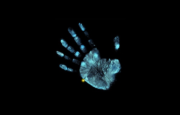 Picture hand, x-ray, fingers, fox, face, fringe, beyond