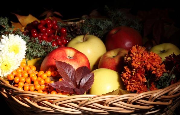 Picture autumn, leaves, flowers, basket, apples, fruit, sea buckthorn