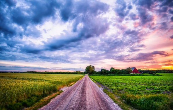 Picture road, summer, the sky, clouds, landscape, sunset, Field, plants, village, ears