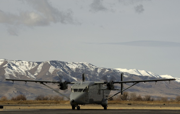 """Picture the plane, military transport, easy, """"Kite"""", Short C-23, Sherpa"""
