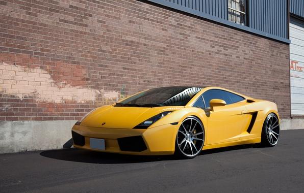 picture yellow gallardo lamborghini side view yellow windshield lamborghini - Yellow Lamborghini Gallardo Spyder Wallpaper
