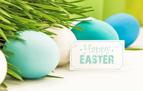Picture grass, flowers, eggs, spring, Easter, flowers, spring, Easter, eggs, decoration, Happy