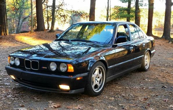 Picture nature, bmw, BMW, classic, e34