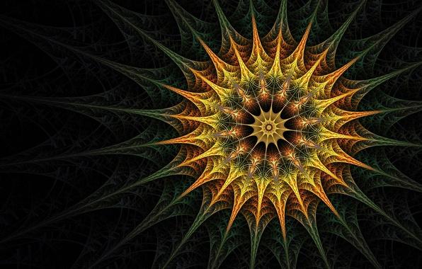 Picture colors, pattern, fractal