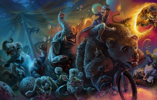 Picture dogs, bike, animals, people, circus, bear, art, zombies, elephants, the danger, poodles