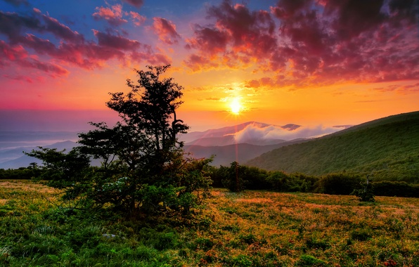 Picture the sky, the sun, clouds, rays, mountains, hills, morning, USA, North Carolina