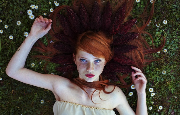 Picture chamomile, freckles, redhead, blue-eyed