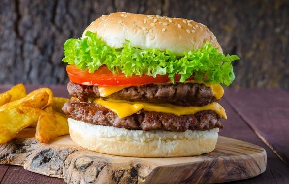 Picture tomato, hamburger, Patty, sandwich, fast food, bun, salad, tomatoes, fast food, hamburger, meat