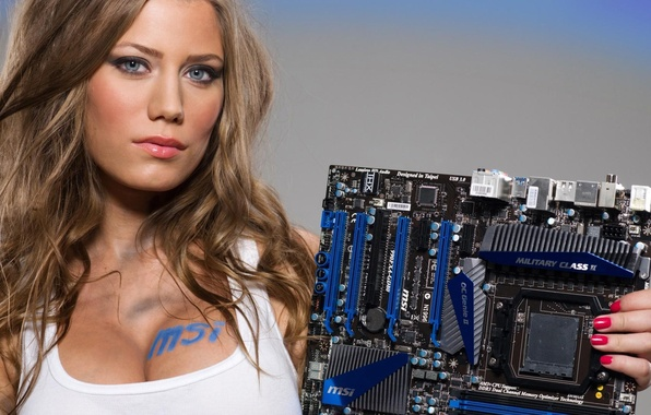 Picture Sexy, Boobs, Motherboard MSI, Blue eyes, extreme hot
