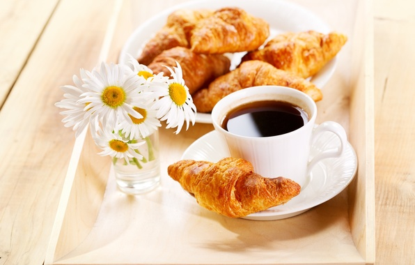 Picture flowers, coffee, chamomile, Breakfast, flowers, coffee, croissants, Breakfast, chamomile, growing