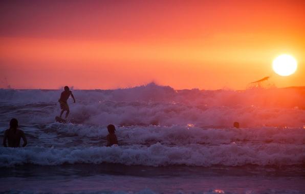 Picture summer, beach, ocean, sunset, water, surf, wave