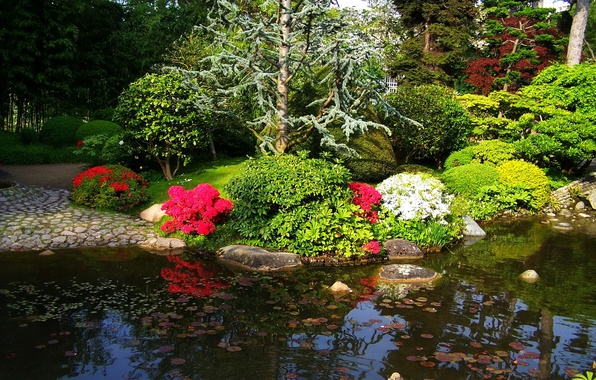 Picture trees, flowers, pond, France, Paris, garden, the bushes, Albert-Kahn Japanese gardens