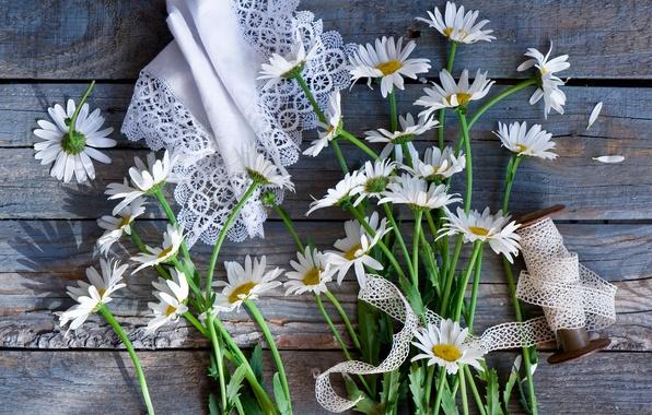 Picture chamomile, napkin, braid, coil