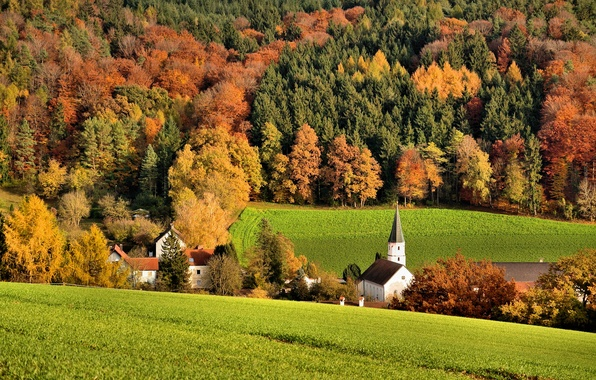 Picture field, autumn, forest, trees, hills, home, Church