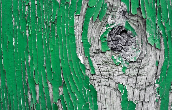 Picture green, wood, pattern, gray