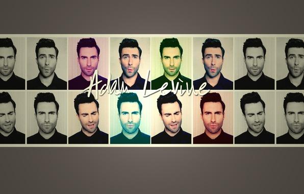 Wallpaper music, Adam, singer, maroon 5, adam levine images for desktop, section мужчины - download