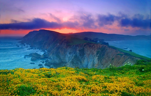 Picture sea, the sky, clouds, sunset, flowers, rock, the ocean, CA, USA, USA, California, Point Reyes …