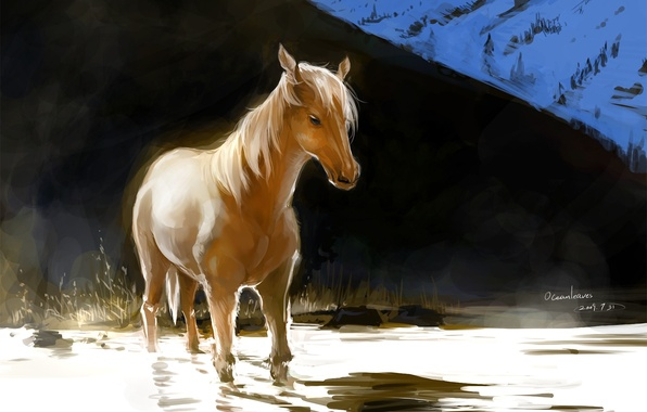 Picture water, light, horse, horse, hill, art, red, ocean, pixiv