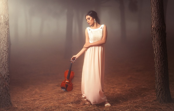 Picture forest, girl, mood, violin, dress