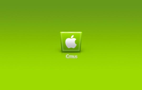 Picture computer, apple, phone, laptop, gadget, citrus