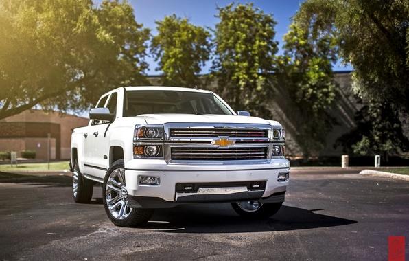 Picture white, Chevrolet, Chevrolet, pickup, Silverado, silverado
