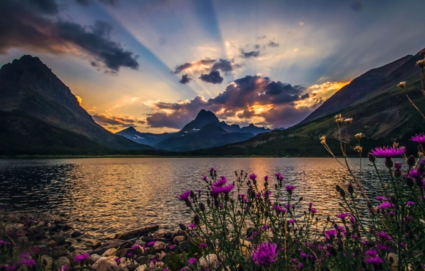 Picture clouds, rays, landscape, flowers, nature, beautiful