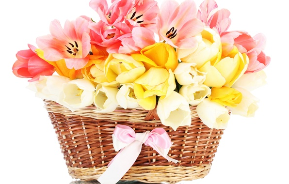 Photo wallpaper flowers, tape, bouquet, nature, basket, flower, tulips, bow, Tulip, basket, spring