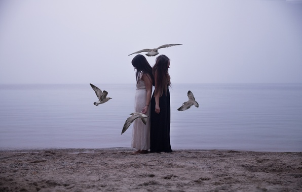 Picture birds, girls, mood