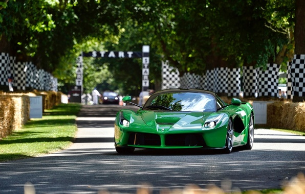 Picture green, Ferrari, V12, F70, LaFerrari, Goodwood Festival of Speed