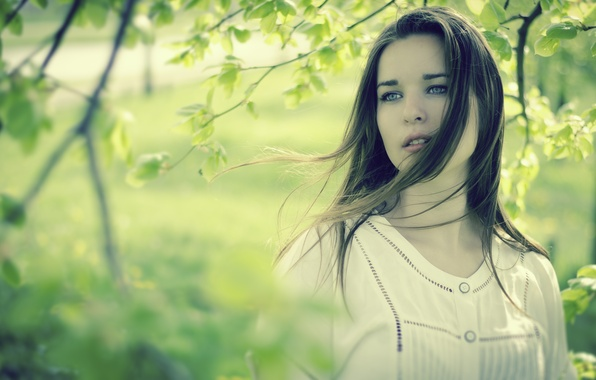 Picture look, leaves, girl, nature, face, sheet, green, background, situation, tree, the wind, Wallpaper, mood, woman, …